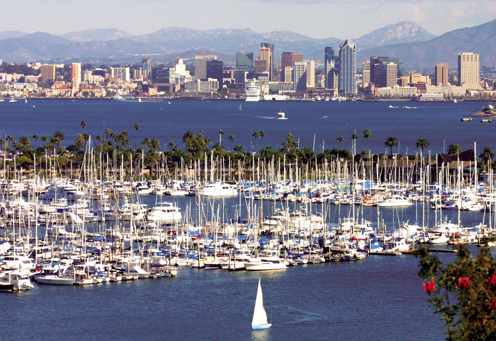 San Diego Harbor Cruises Boat Tours Amp Whale Watching Excursions